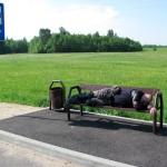 Сладкий сон на автобусной остановке