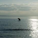 Купание в баренцевом море